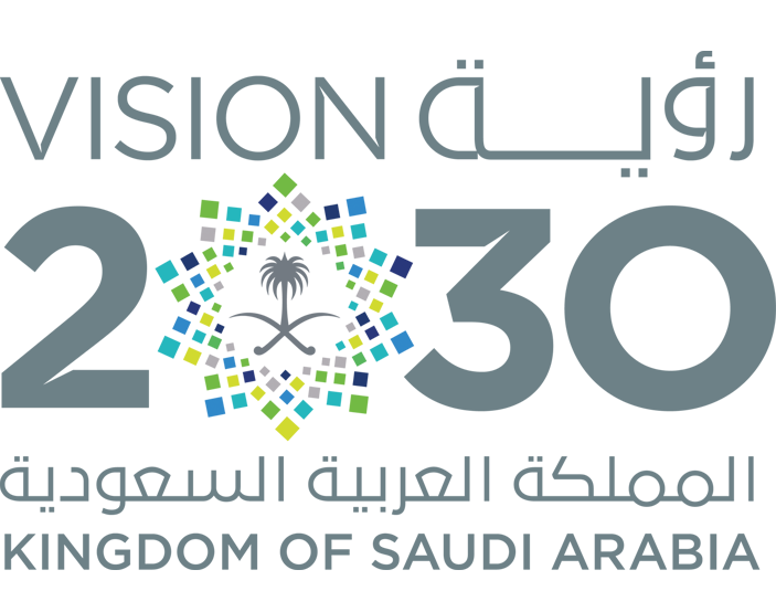 Vision 2030 - Light Vision IT